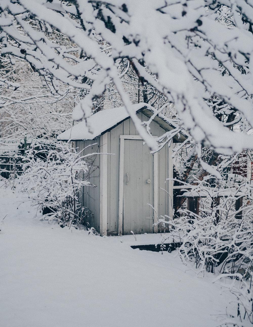 Talvi ja joulukuu saapuivat samaan aikaan!