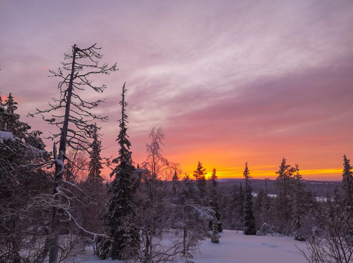 Valohoitoa Lapissa – lunta, revontulia ja pastellisävyisiä auringonlaskuja